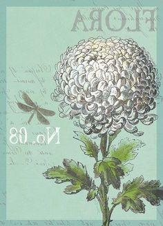 Flora (Devon Ross)