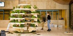 """IKEA's """"Growroom"""" Is the Next Best Thing in Small-Space Gardening  - HouseBeautiful.com"""