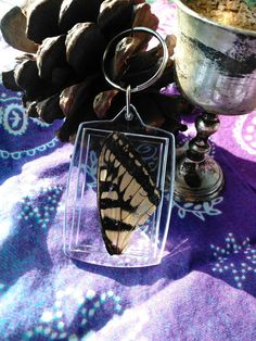 Check out this item in my Etsy shop https://www.etsy.com/listing/523677898/butterfly-wing-keychain
