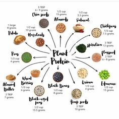 VEGAN PROTEIN SOURCES  Are you a vegan vegetarian or just someone wanting to decrease your meat consumption?  Well there are a few things you should be aware of -- 1) Getting ENOUGH protein is important to maintain immune function and maintain  build musc