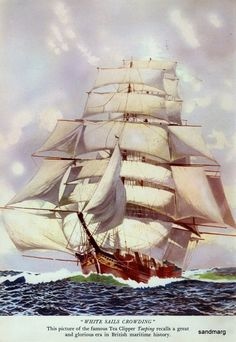 The British Tea Clipper Taeping recalls a glorious era in British maritime history. Learn more about the famous world wide tea clipper races of the Sailboat Art, Nautical Art, Sailboats, Letter Of Marque, Old Sailing Ships, Vintage Boats, Day Book, Ship Art, Tall Ships