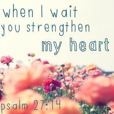 Strengthen your heart Psalm 27:14