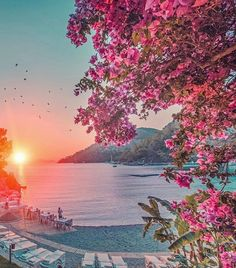 General information on Gocek Turkey, marinas, islands and beaches. Things to do in Gocek town. Beautiful Flowers, Beautiful Places, Beyond The Horizon, Turkey Photos, Nature Images, Travel Aesthetic, Wonders Of The World, Places To Travel, The Good Place