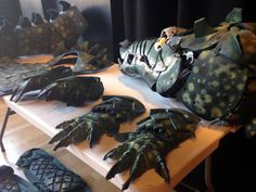 Updated Crocodile costume for the Peter Pan Pantomime at Strode Theatre - Somerset, UK - December 2015. www.duncancameron.org Peter Pan Crocodile, Crocodile Costume, Pantomime, Somerset, Mask Making, Theatre, Scenery, December, Costumes