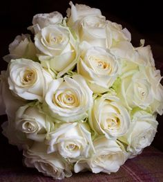 Wedding Flowers, Rose, Plants, Roses, Plant, Planting, Planets