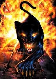 crouching panther - Google Search