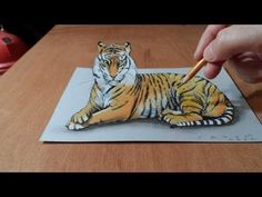 Trick Art, Watch my Draw a 3D Tiger, Time Lapse - http://www.7tv.net/trick-art-watch-my-draw-a-3d-tiger-time-lapse/