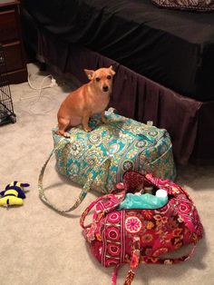 You're not going anywhere without me