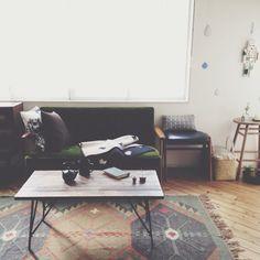 アメリカンカルチャーを現代のライフスタイルに落とし込んだ家具「ACME Furniture」