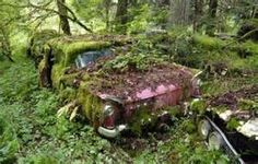for abandoned cars 640 29 An abandoned car graveyard in the forest ...