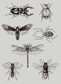 ... Tattoo on Pinterest | Bee tattoo Insect tattoo and Honey bee tattoo
