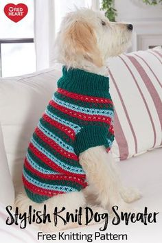 Stylish Knit Dog Sweater free knit pattern in With Love yarn. Remember your best, most loyal friend with a handsome knit dog coat. We love the holiday inspired stripes, but you should choose colors that align with your pooch's personality. Knitting Patterns For Dogs, Jumper Patterns, Knit Patterns, Free Knitting, Baby Knitting, Crochet Baby, Free Crochet, Clothes Patterns, Knitted Dog Sweater Pattern