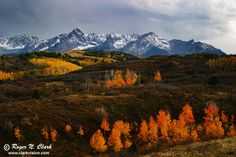 autumn in colorado | image colorado.fall.c10.01.2003.IMG_9793.b-700.jpg is Copyrighted by ...