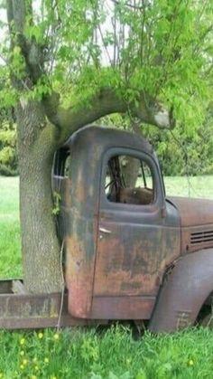 Farm Trucks, Old Trucks, Abandoned Houses, Abandoned Places, Abandoned Vehicles, Abandoned Mansions, Jdm, Design Autos, Rust In Peace