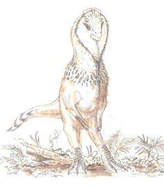 Feathered Cryolophosaurus, finished illustration and preliminary sketches by Sammy Hall Jurassic Park, Jurassic World, Dinosaur Skeleton, Dinosaur Art, Feathered Dinosaurs, The Good Dinosaur, Extinct Animals, Prehistoric Creatures, Prehistory