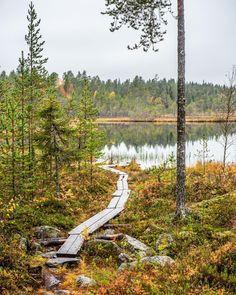 Metsälampi . . . . #visitlapland #visitfinland #outdoorfinland #suomiretki #retkipaikka #luontoonfi #discoverfinland #ig_finland… Lapland Finland, Long Winter, Mother Nature, Honey, Hiking, Camping, Dreams, Mountains, Star