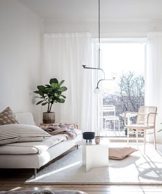 Bedroom and living room combination - via Coco Lapine Design blog