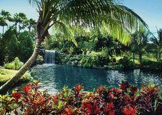 DONE! Garden of the Groves, Grand Bahama Island, Bahamas.