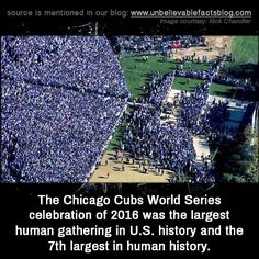 Chicago Cubs World Series celebration of 2016 was the largest human gathering in U. history and the largest in human history. Chicago Cubs Fans, Chicago Cubs World Series, Chicago Cubs Baseball, Chicago Bears, Tigers Baseball, World Series 2016, Hockey, Basketball, Cubs Win