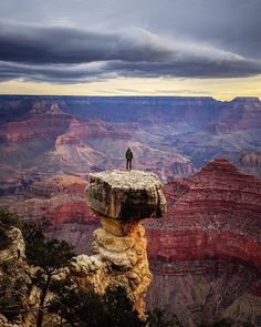 Grand Canyon Arizona US Wallpapers) – Funny Pictures Crazy Grand Canyon Arizona, Arizona Usa, Arizona Travel, Bryce Canyon, Arches Nationalpark, Yellowstone Nationalpark, Parque Nacional Do Grand Canyon, Places To Travel, Places To See