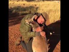 Η ανιδιοτελής αγάπη των ζώων