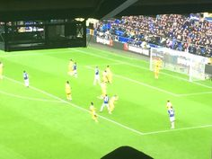 Everton, Soccer, Football, Sports, Hs Sports, Futbol, Futbol, European Football, European Soccer