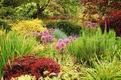 lush garden - Google Search