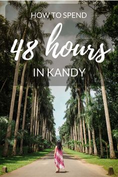 There are so many amazing places to visit in Kandy! The temple of the tooth, royal botanical gardens, dance performances and more. Here are the top things to do Asia Travel, Solo Travel, Sri Lanka, Cool Places To Visit, Places To Go, Road Trip, Learn To Surf, Travel Inspiration, Viajes