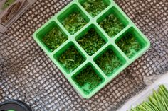 Ball® Frozen Herb Starters