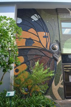 Butterfly wall at the College of tropical Agriculture and Human Resources #makemanoayours