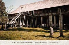 Betang Adalah Rumah Adat Khas Kalimantan Tengah Yang Tersebar Di Berbagai Lokasi Di Wilayah Kalimantan Tengah Dan Dihuni Oleh Orang Orang Suku Kalimantan Rumah