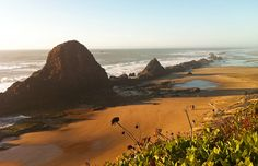 7 hikes around Oregon's coast.