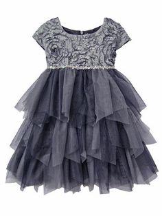1b1209abf1e Isobella  amp  Chloe Desert Fire Silver Dress Sizes 2T-6X NEW The cap sleeve