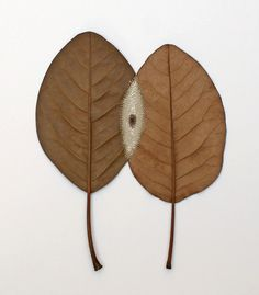 Susanna Bauer. Inter-Lace. Magnolia Leaves, cotton yarn 38 x 38 cm