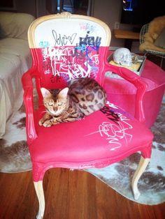 graffiti chair - desire to inspire - Monday's pets on furniture Graffiti Furniture, Funky Furniture, Upcycled Furniture, Home Decor Furniture, Unique Furniture, Furniture Makeover, Painted Furniture, Furniture Design, Painted Chairs