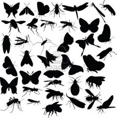 -insects-silhouettes