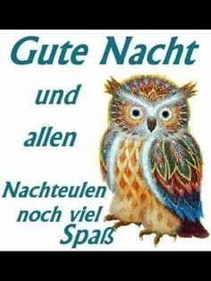 gute_nacht_nachteulen_a672424 (506×675)