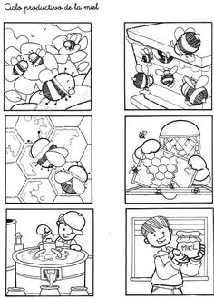 Secuencias Temporales para recortar y colorear! Bees For Kids, Story Sequencing, Bee Crafts, Picture Story, Bugs And Insects, Bee Happy, Bee Keeping, Life Cycles, Colouring Pages