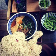 Yes I very much like Japanese food.  .  #japanesefood #lecker #goodfoodgoodmood #yummy #fluffylove #hundeleben #plushiesofinstagram #kuscheltierliebe #edamame #souptime #lovelaughlobilat #dogsofberlin #