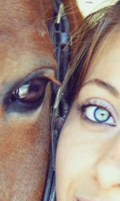 A Dog looks up to a man, a cat looks down on a man, but a patient horse looks a man in the eye and sees him as an equal.