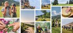Wettbewerb 2020 DE Entlebucher, Parks, Polaroid Film, Into The Wild, Wonders Of The World, Communities Unit, Parkas