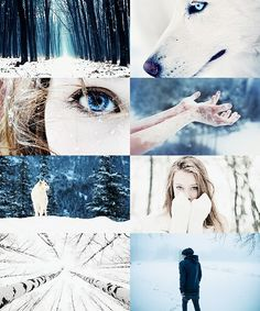 Shiver series. The struggle of reading a book with no fandom *violently sobs in a corner alone with my feelings*