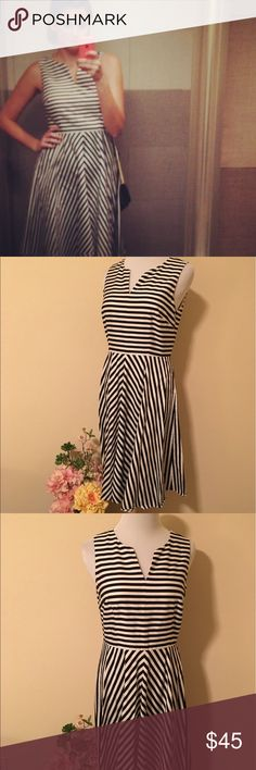 Ann Taylor Dress Sz 4P Black & White Striped This black and white dress from Ann Taylor is so flattering and comfortable! This is perfect for any office casual look or a nice night out. It hits just under the knee. Only worn a few times, still in brand-new condition with no flaws or signs of wear. 🌺  ✨If you have questions, please feel free to ask!  ✨No offers on items $10 & under please! ✨20% off all bundles!  ✨Look for items in my closet with a 🌴 for high end designers at great prices…
