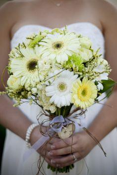 Nick Corona Photography - gerber daisies