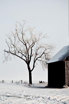 Iowa in the winter