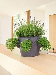 Tall Planters: Fairfield Self Watering Patio Planter | Gardeners.com