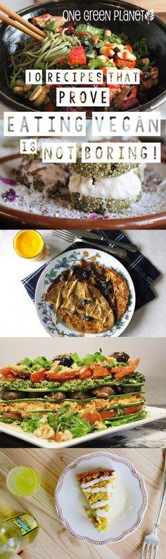 http://onegr.pl/1o1kO9V #vegan #vegetarian #recipes #lasagna #burger #pizza #feta #crepes #noodles #cake #cookies #icecream
