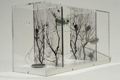 Jane Edden's art installations in resin