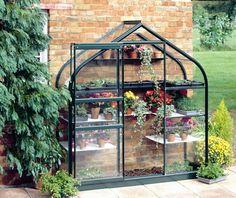 Long narrow greenhouse