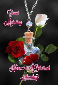 Good Morning Happy Sunday, Happy Sunday Quotes, Good Morning Prayer, Morning Greetings Quotes, Good Morning Coffee, Morning Blessings, Good Morning Good Night, Good Morning Wishes, Morning Messages